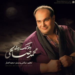 Mohammad Salehi – Delam Tang Mishe
