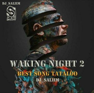 DJ Saliim – Waking Night 2 (Best Song Tataloo)
