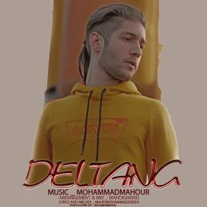 Mohammad Mahour – Deltang
